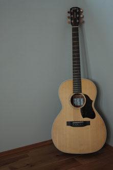 VN-3 Standard