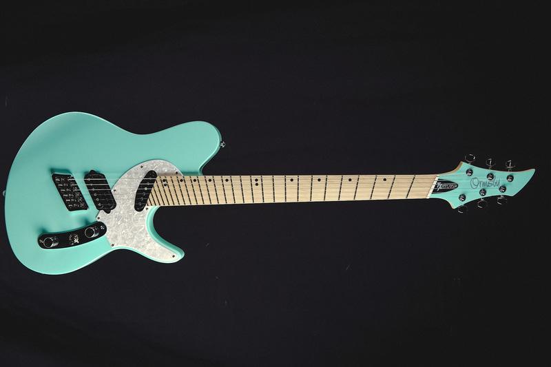 ファンフレットギター