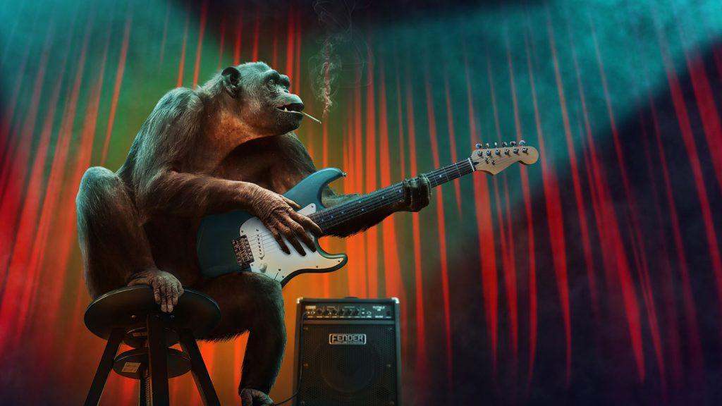ギターを演奏する猿の写真