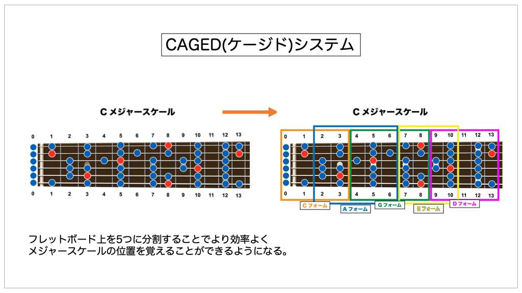 CAGEDシステムの考え方